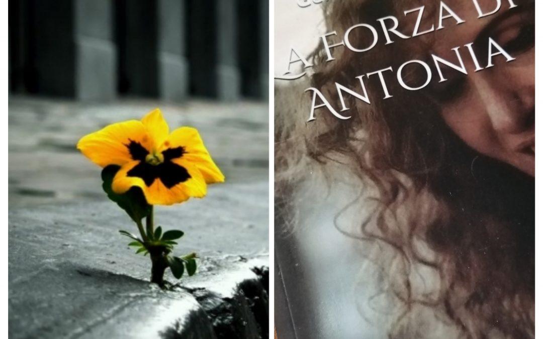 🌸 Un Fiore che sboccia nonostante le intemperie 💗!